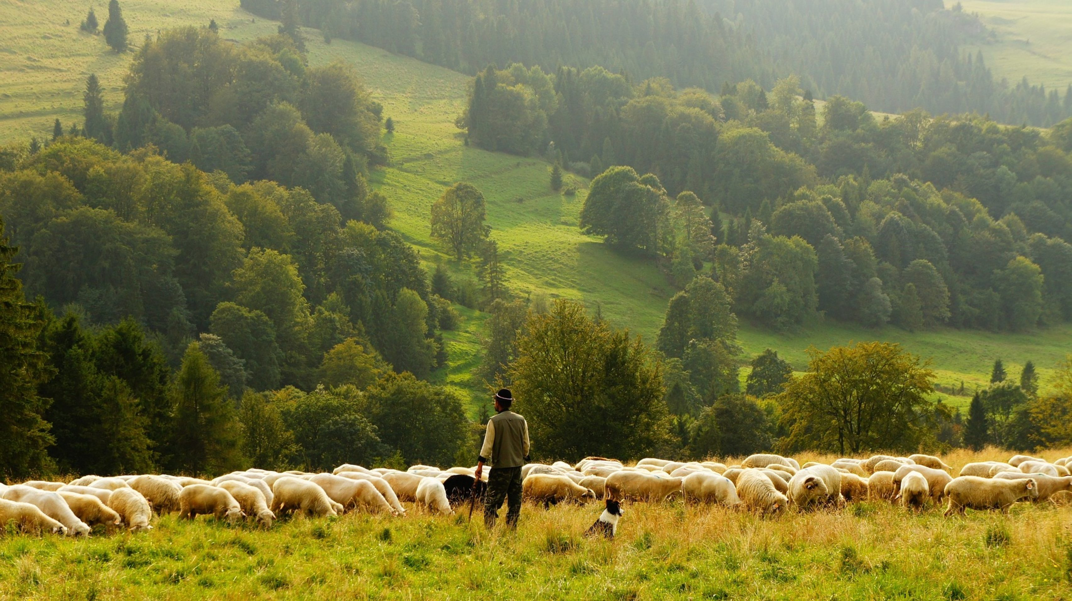 Le Seigneur est mon berger